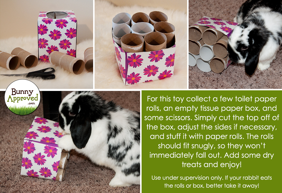 Diy Rabbit Toy Ideas Bunny Approved House Rabbit Toys