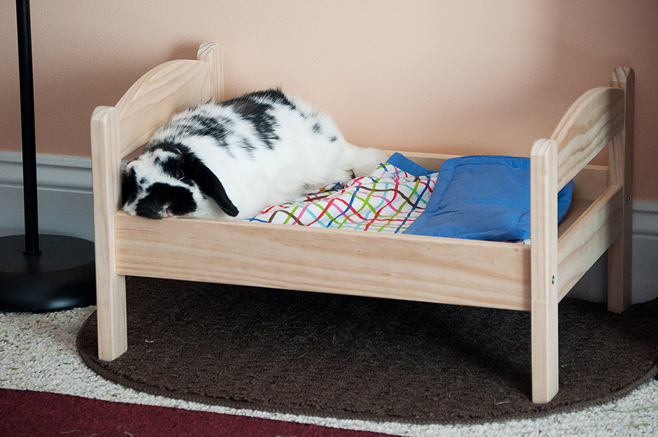 Bunny sleeping in his Ikea doll bed.