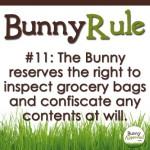 BunnyRule11