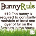 BunnyRule12