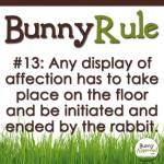 BunnyRule13