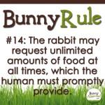 BunnyRule14