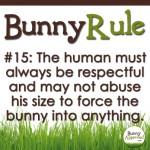 BunnyRule15