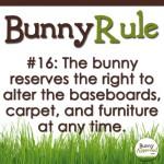 BunnyRule16