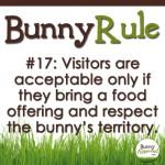 BunnyRule17