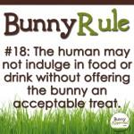 BunnyRule18