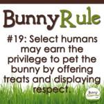 BunnyRule19