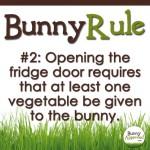 Bunny Rule 2