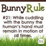 Bunny Rule 21