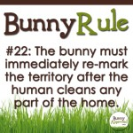 BunnyRule22