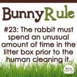 BunnyRule23