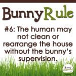 BunnyRule6