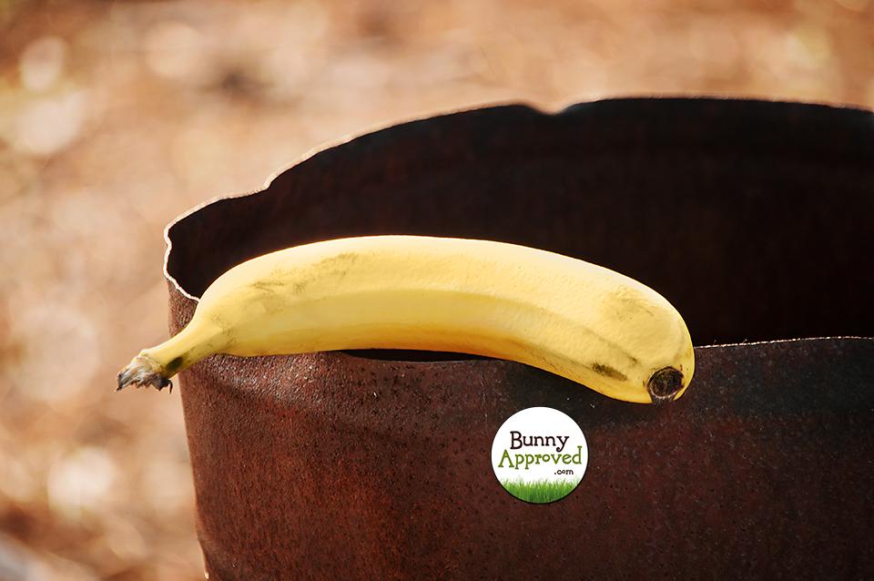 Banana 2