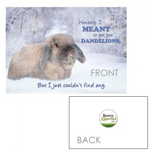 Greeting Card Rabbit Pet Snow Winter