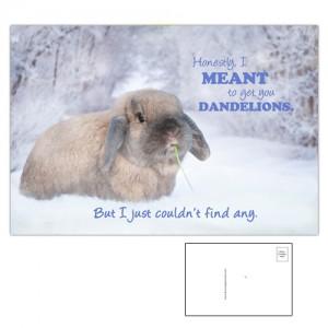 Snow Bailey Rabbit Postcard