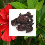 Starwest Botanicals Hibiscus