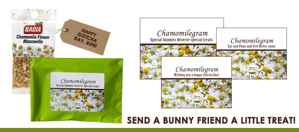 Banner-Chamomilegram